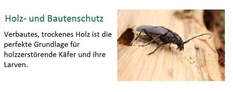 Holz- & Bautenschutz